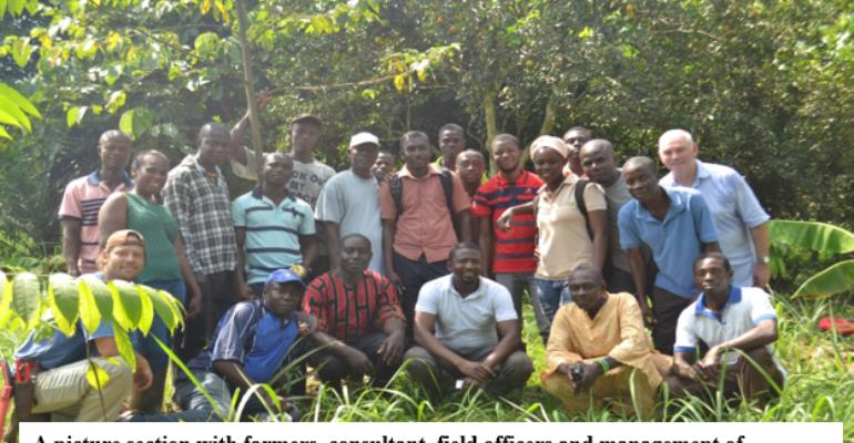 Sustainable Agriculture: Farmers Empowered By Serendipalm In Kwaebibirem