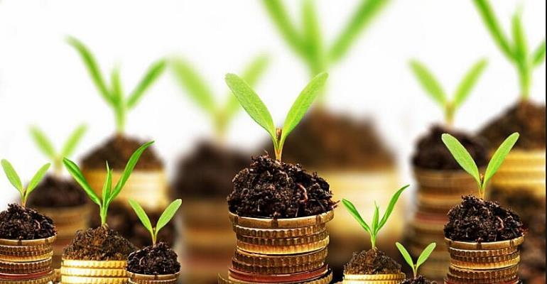 Business Plan of Starting Organic Fertilizer Production Plant