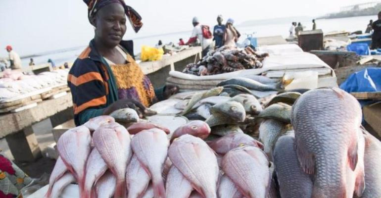 Fishermen Appeal To Gov't To End Illegal Fishing Practices Ahead Of Closed Season