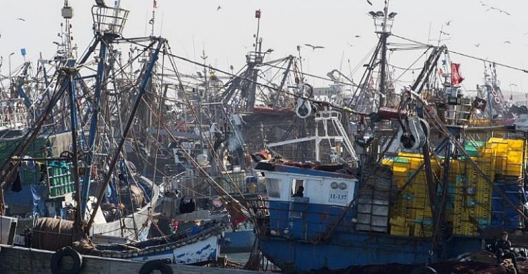 EU Skirts Rule Of Law To Adopt Moroccan Fish Deal