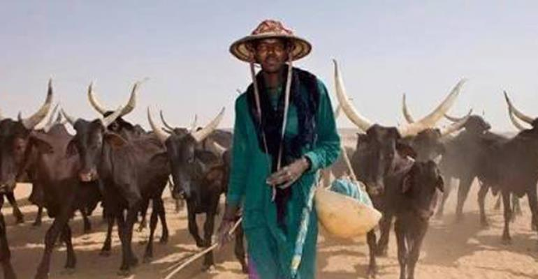 A Fulani herdsman