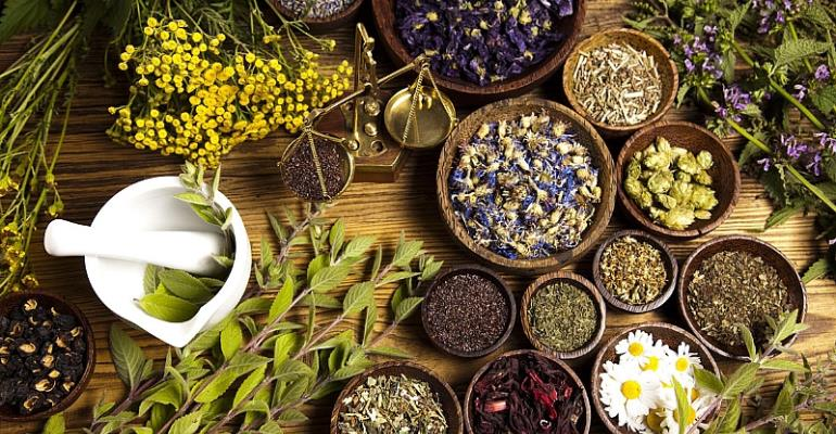 Why The Nation Must Invest In Herbal Medicine Development