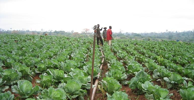 Legon Lecturer Says One village, One Dam' Will Boost Agric Sector