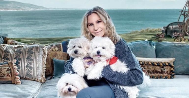 Barbra Streisand Clones Beloved Dog
