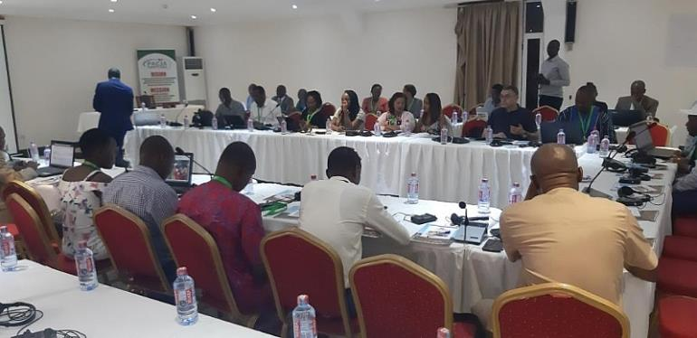 Africa Climate Week: Groups express concerns over forest decline