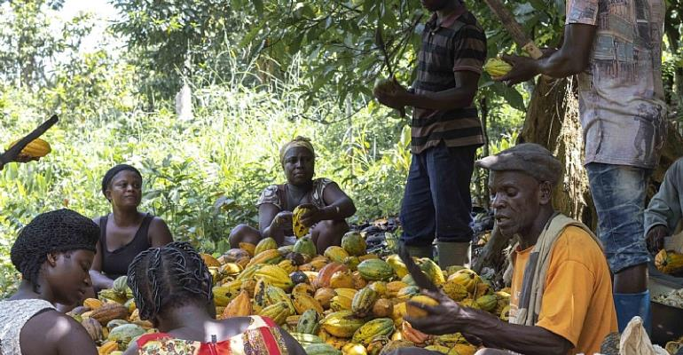 Cocoa360 Is Doing Business In Africa For A Great Purpose
