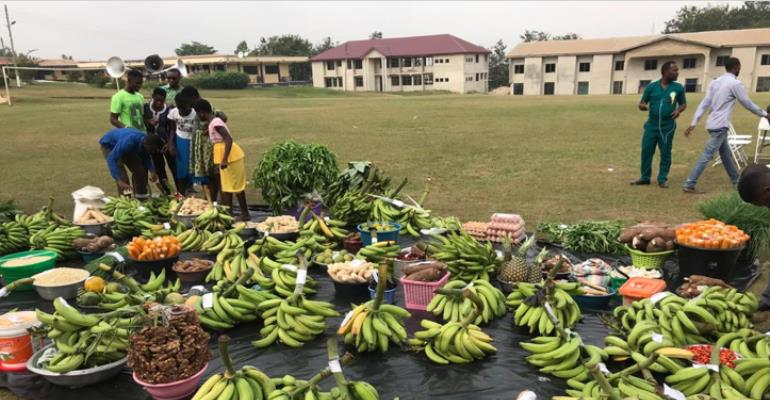 Farmers In UWR Laud Planting For Food And Jobs