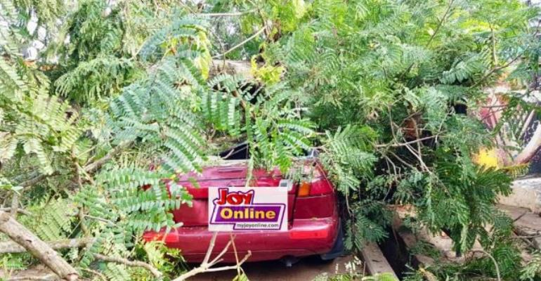 The tree crushed the car beyond repair.