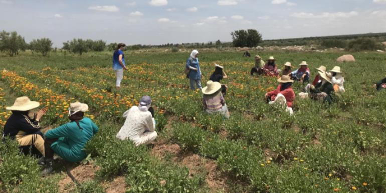 The Aboghlou women's cooperative meets outside in Ourika Valley, Morocco.