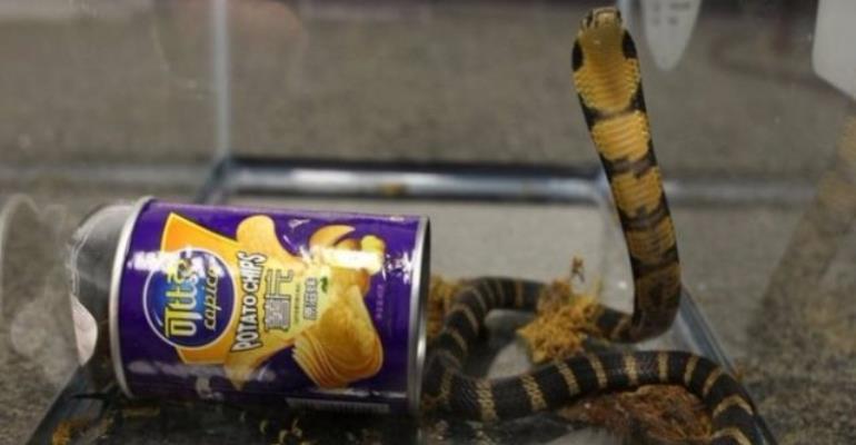 Man arrested after live cobras found inside potato chip cans