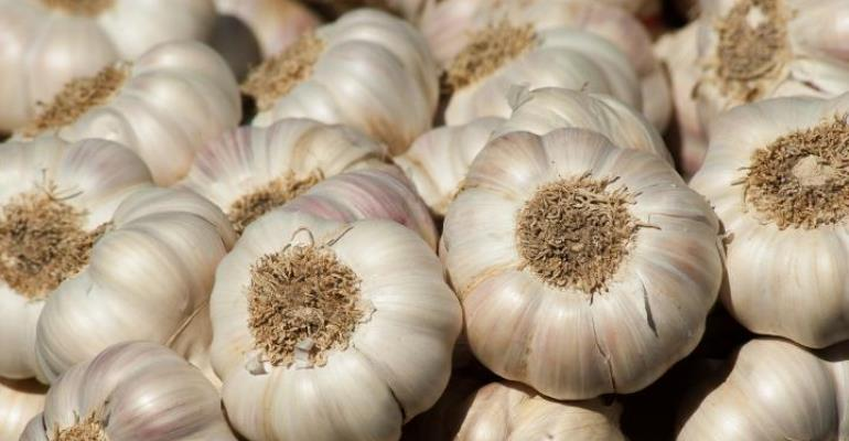 Raw Garlic Benefits for Fighting Disease