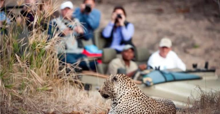 Chinese Travellers' Interest In African Tourism Growing