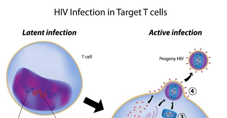 Have new HIV infections around the globe dropped in 'any meaningful way'?