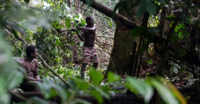 Wildlife groups accused of funding abuses against Pygmies in Africa