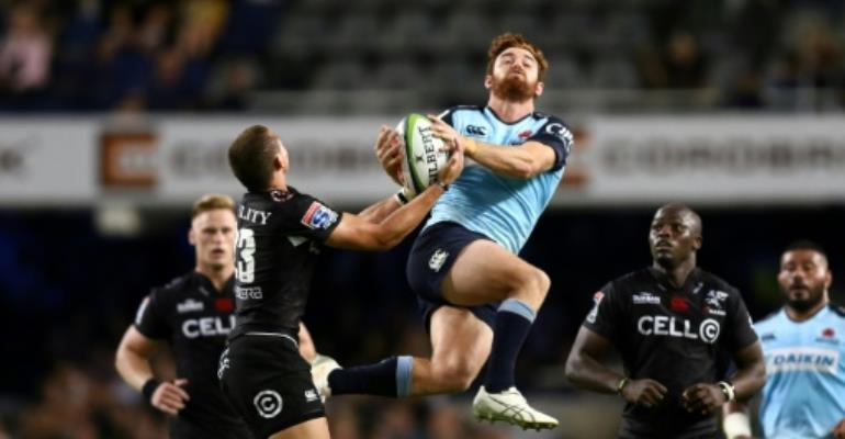 Teen Bosch stars as Sharks carry on winning