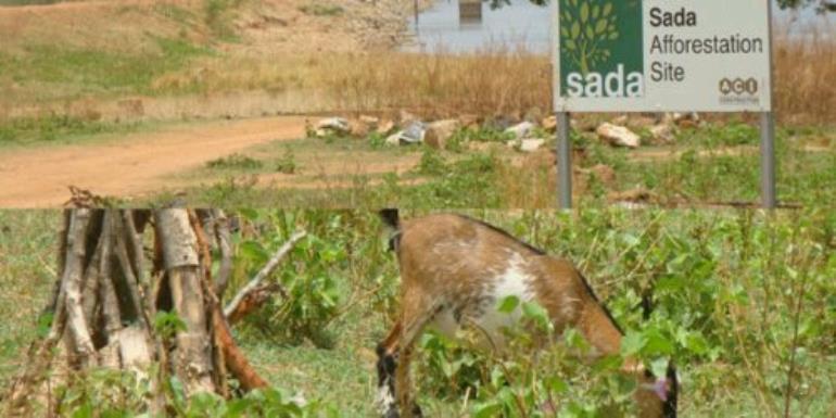 Sad SADA story: SADA lawyers demand retraction, apology