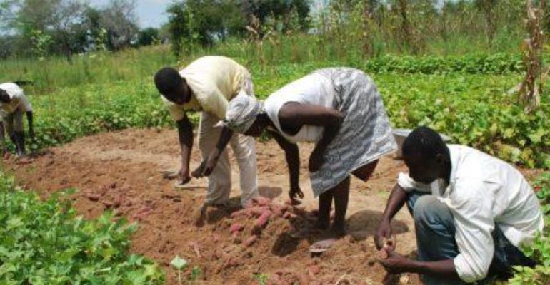 AGRA issues strong call for G8 leaders to support African agriculture