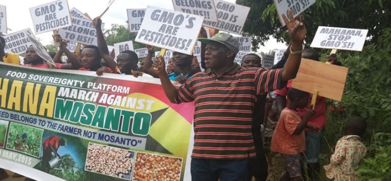 A Protest March Against The Introduction Of Genetically Modified Organism (gmo's) By Farmer In Ghana.