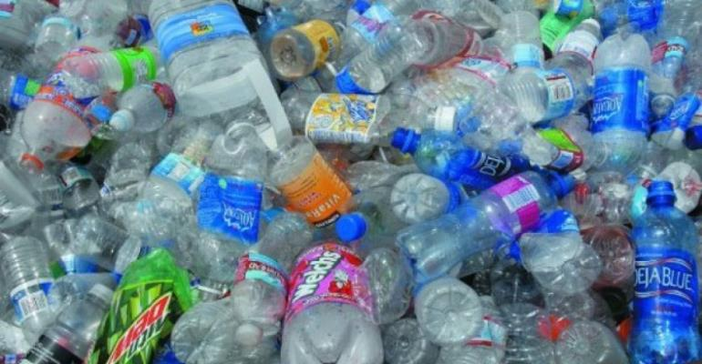 Plastic Degrading Fungus Discovered By Researchers On Dump Site