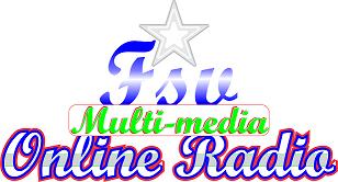 FSV Media logo