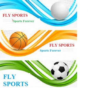 Fly Sports logo