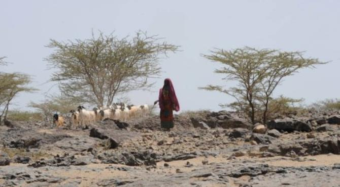 Clashes in northern Kenya between rival ethnic groups have forced tens of thousands of people to flee into Ethiopia.  By Simon Maina (AFP/File)