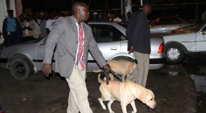 Kenyan police officers arrive with sniffer dogs at the scene of a grenade attack in Mombasa.  By Michael Richard (AFP/File)