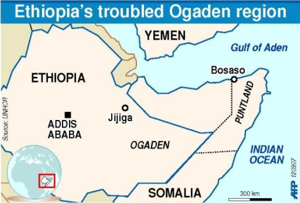 Sweden's Bildt under fire over Ethiopia detainees