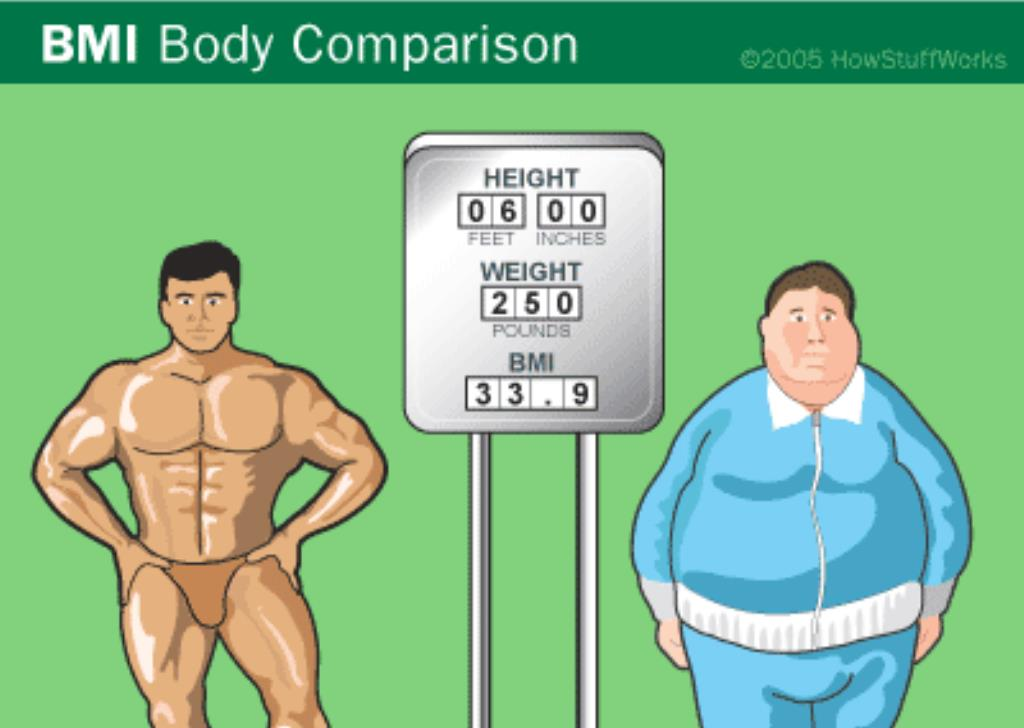 BODY MASS INDEX-BMI