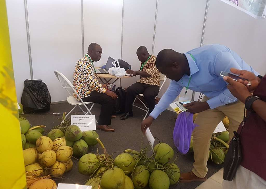 Coconut Federation Of Ghana Demand Inclusion Into National Tree Crop Authority Bill