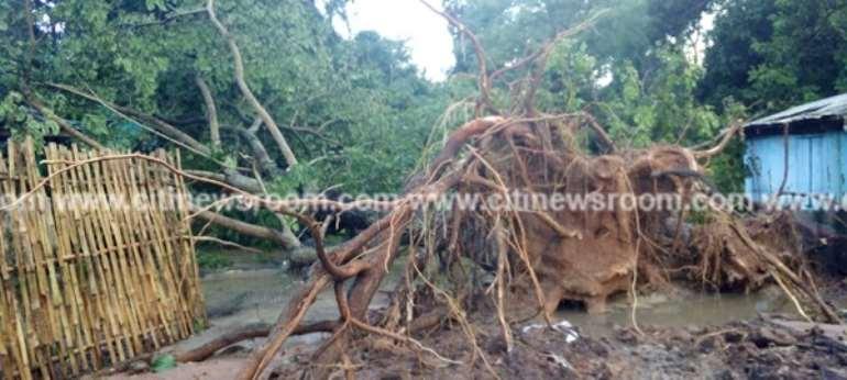 V/R: Rains cause havoc at Tafi Atome Monkey Sanctuary