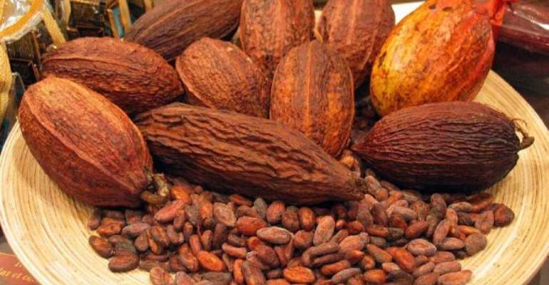 Two Farmers Jailed For Stealing 7 Bags Of Cocoa