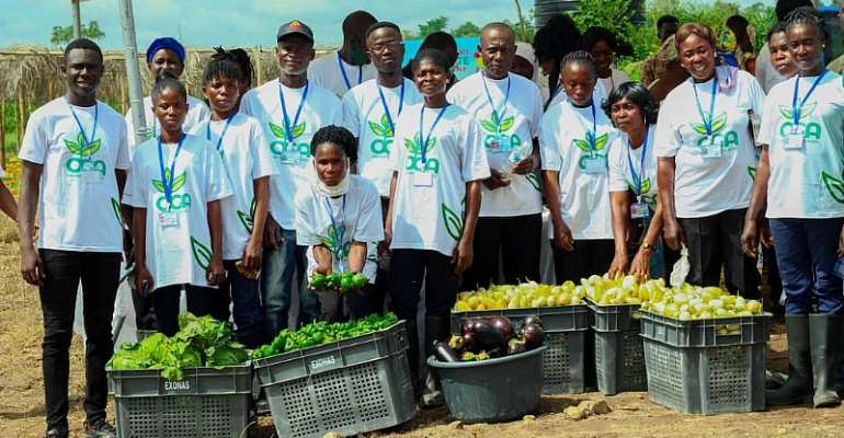 AngloGold Ashanti Launches 'Obuasi Goes Agro' Programme