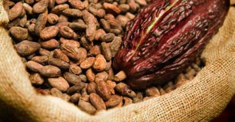 Economist Predicts Unchanged Cocoa Price Likely To Throw Revenue Off Target