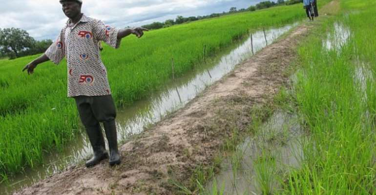 11.3 million Ghanaians Are In Agriculture – Report