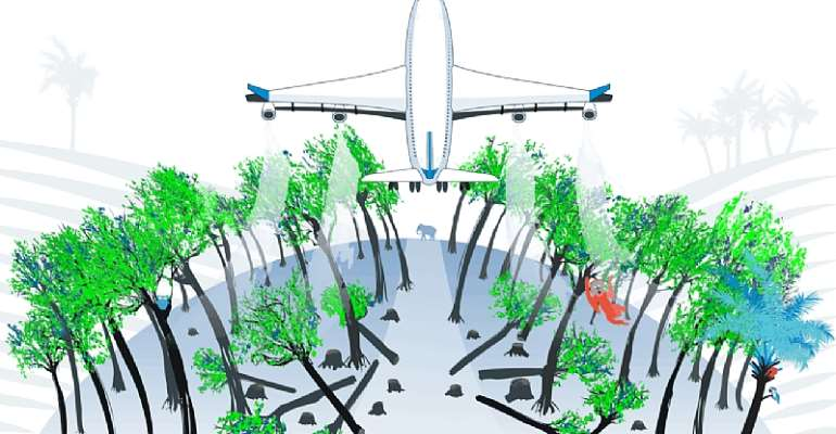 Aviation climate targets may drive 3 million hectares of deforestation