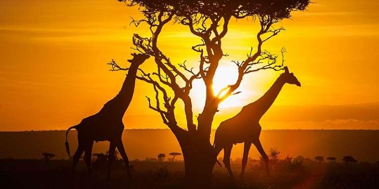 4 Beautiful Things About Kenya