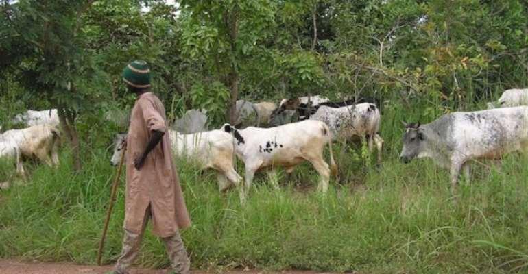 Berekum Sets To Deal With Fulani Herdsmen