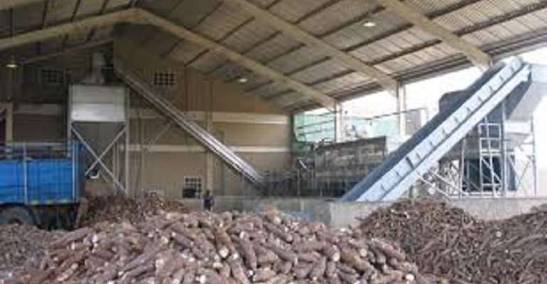 1D1F: Damongo To Get $50K Cassava Processing Factory — DCE Discloses
