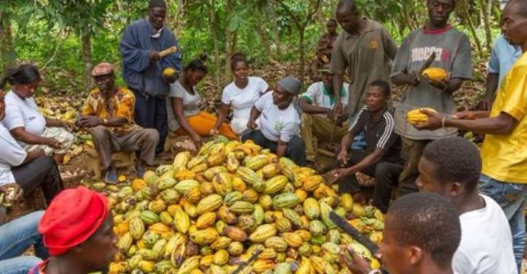 Windfall At 2020/21 Cocoa Sale: Ghana Bags Extra $40m