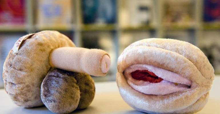 Genitals made of wood and soft materials were used for a while in Basel schools for sex education classes – photo credit: swissinfo.ch