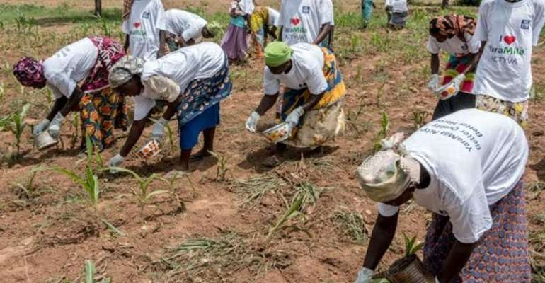 Africa AgriBusiness Projected To Hit $1 Trillion By 2030