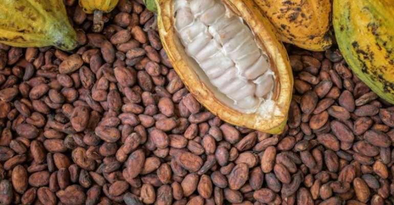 Ghana, Ivory Coast Fix Cocoa Prices To Stop Exploitation Of Farmers
