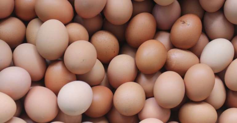 A/R: Price Of Eggs To Increase Next Year – Poultry Farmers
