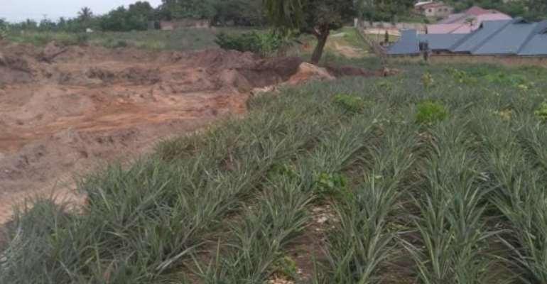 Samsam Communities living In Fear As Gun-Wielding Landguards Engage In Sand Winning