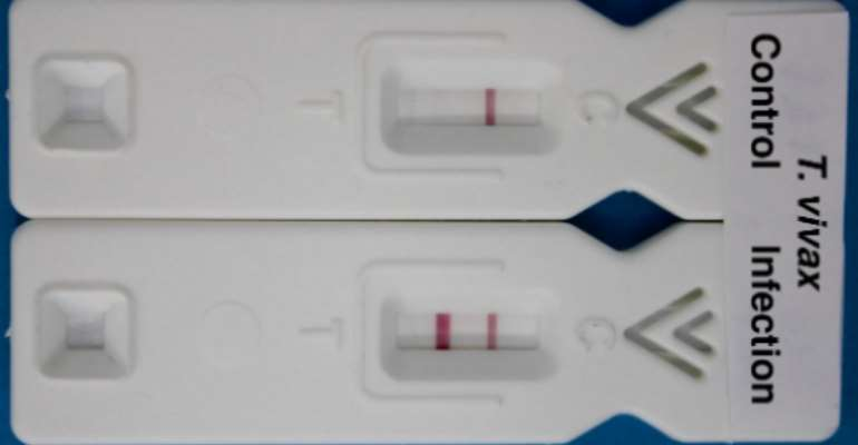New Blood Test Developed To Tackle Major Livestock Disease In Africa