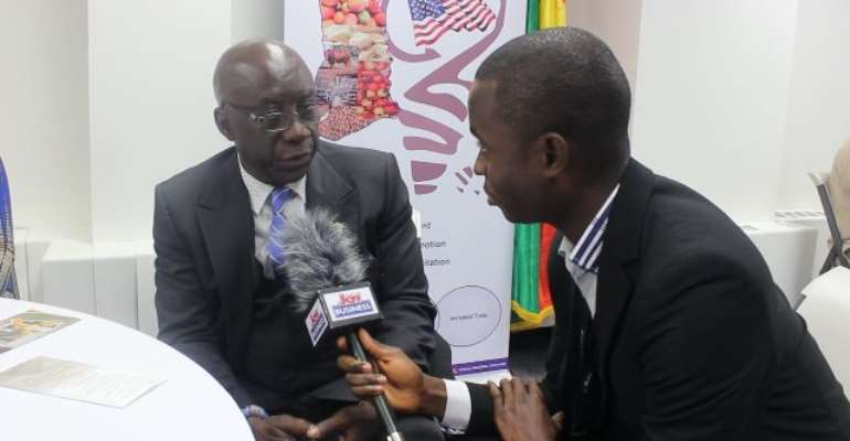 Year Of Return: Ghana's Consulate General In New York Processes 216 Visas Daily