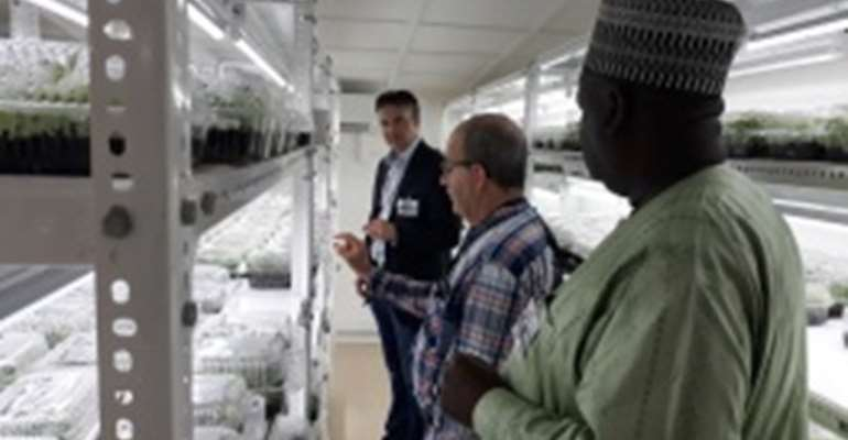 Dr Peter Kulakow, IITA Cassava Breeder (Middle) explaining the SAH technology in Ibadan on how thousands of cassava seedlings are propagated in record time