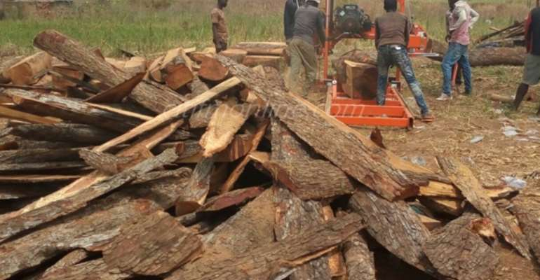 Rosewood ban still in full force – Lands Ministry