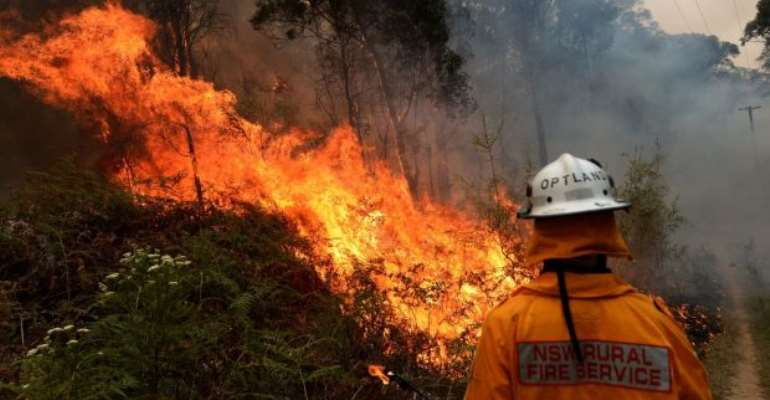 Rural Fire Service firefighter works to contain a bushfire that spread from the Gospers Mountain fire, in Colo Heights, New South Wales, Australia, November 16 2019. Photograph Jeremy PiperEPA